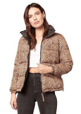 BB Dakota Cool Kitten Puffer Jacket