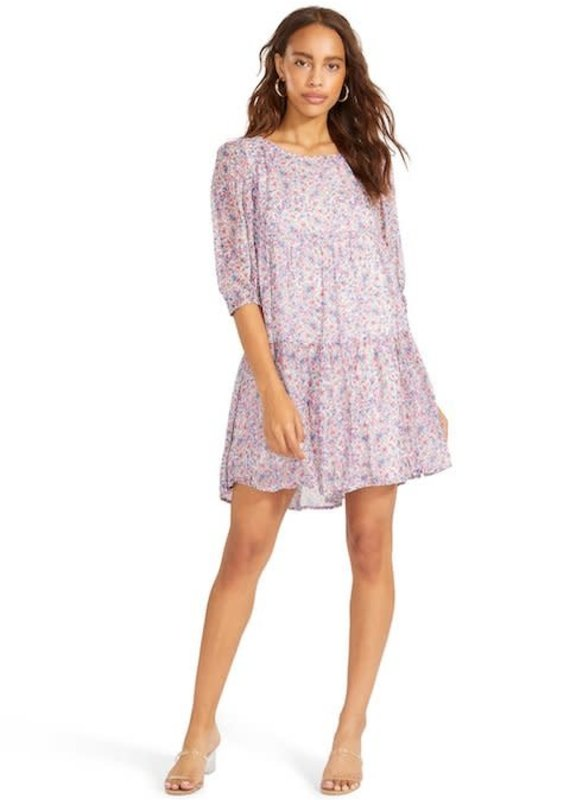 BB Dakota Free Spirit Dress