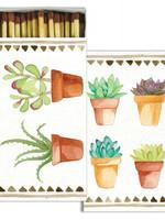 Watercolor Succulents Matches