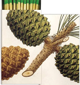 Pinecones Matches