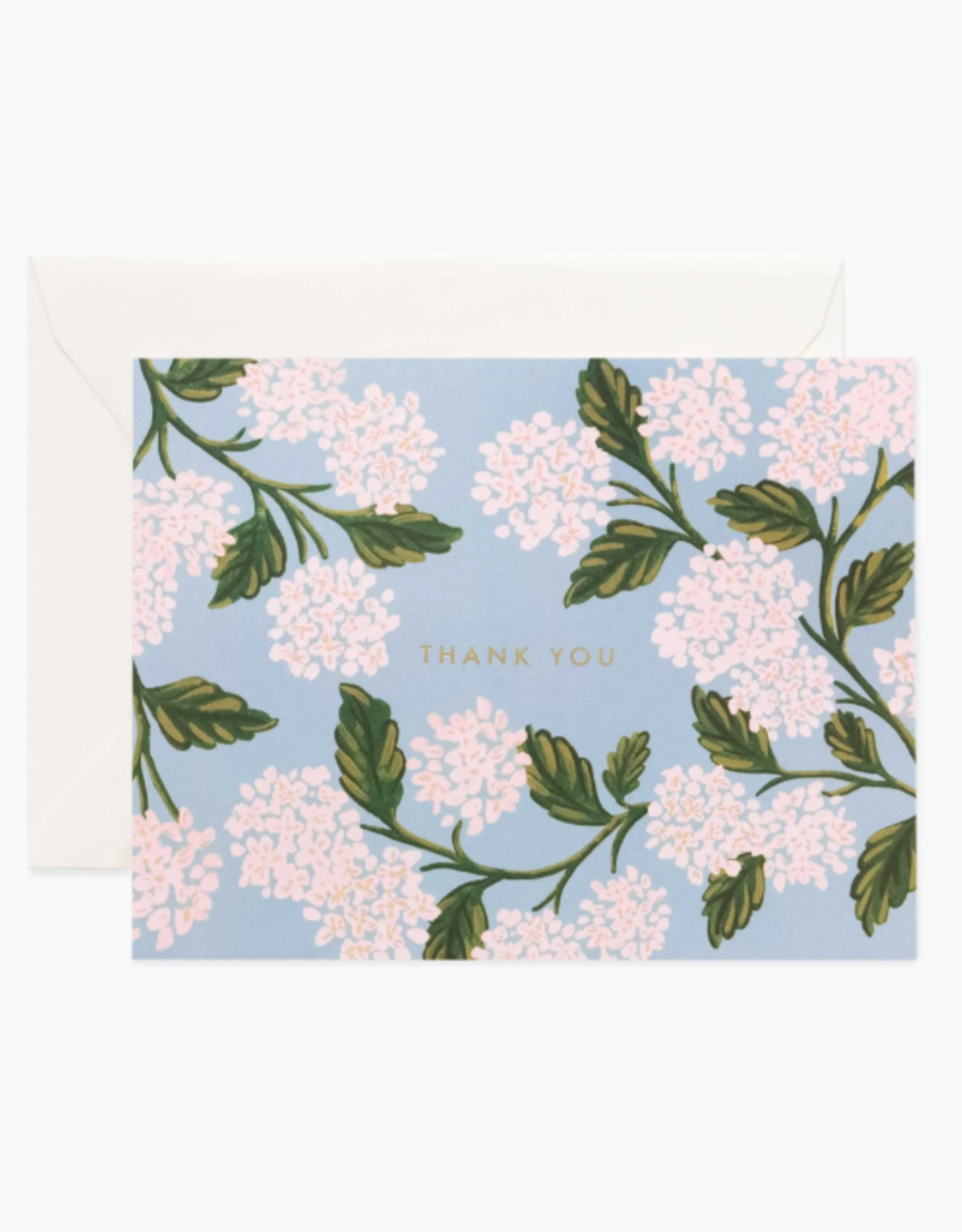 Boxed Set of Hydrangea Thank You Cards