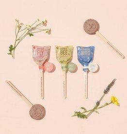 Seed Lollipops