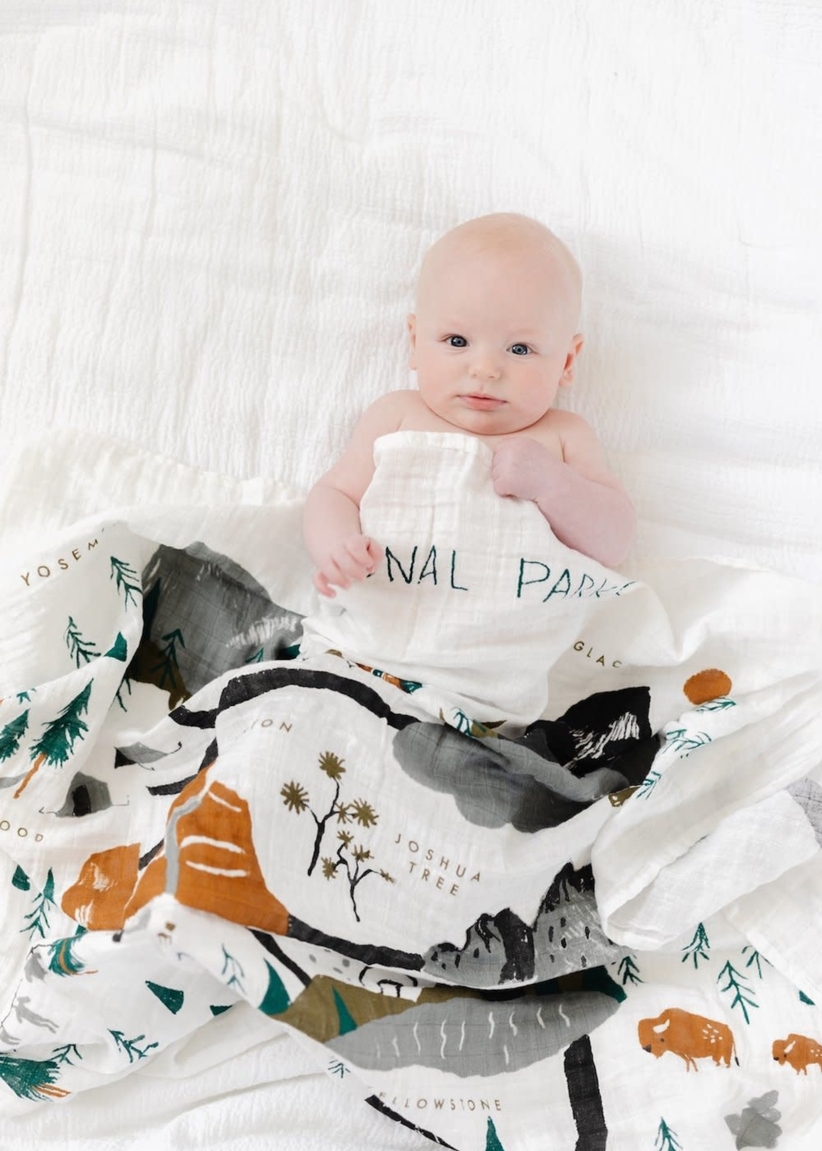 Clementine Kids National Parks Swaddle