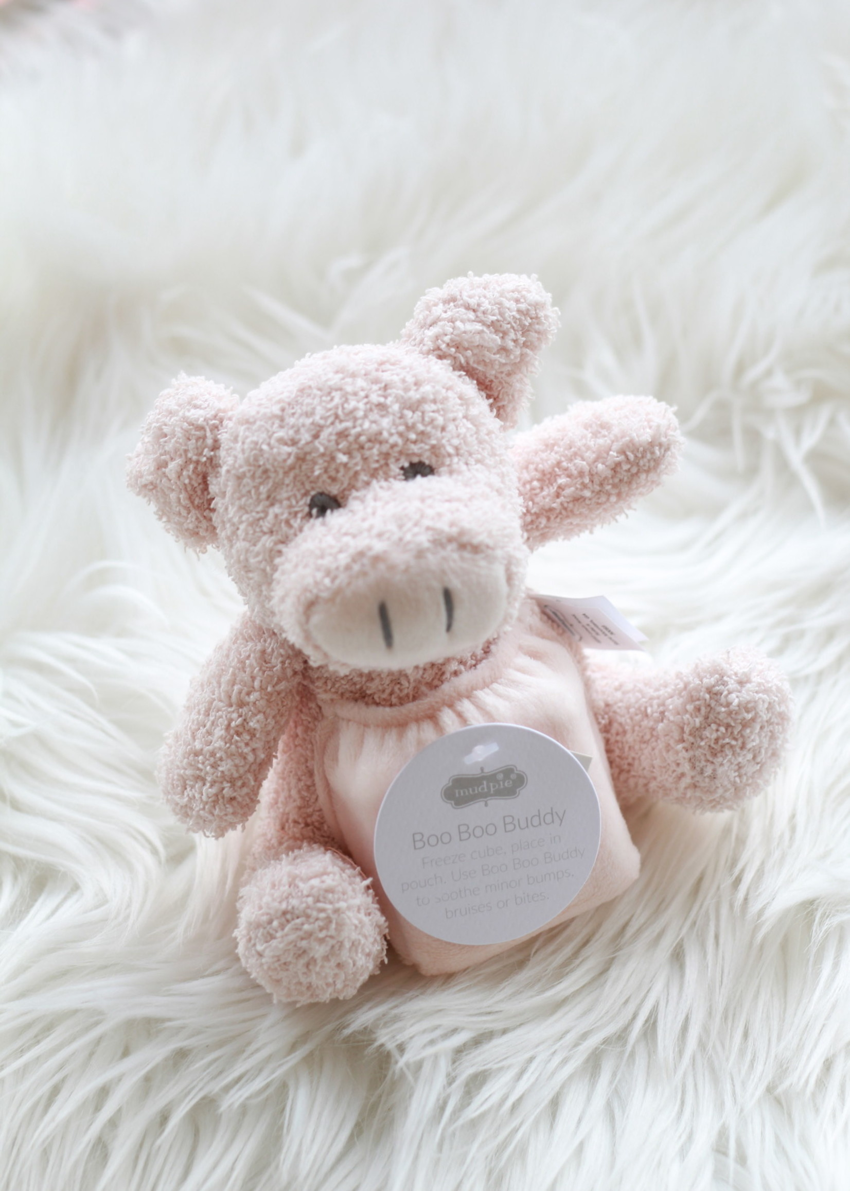 Pig Boo Boo Bunny