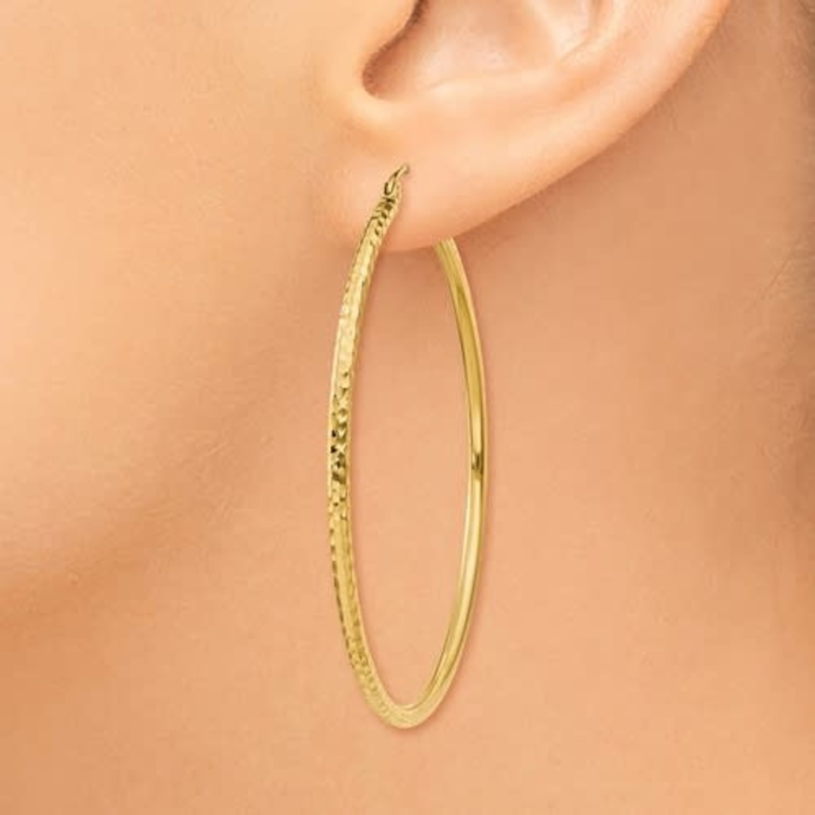 This Is Life The Sharon Hoop Earring