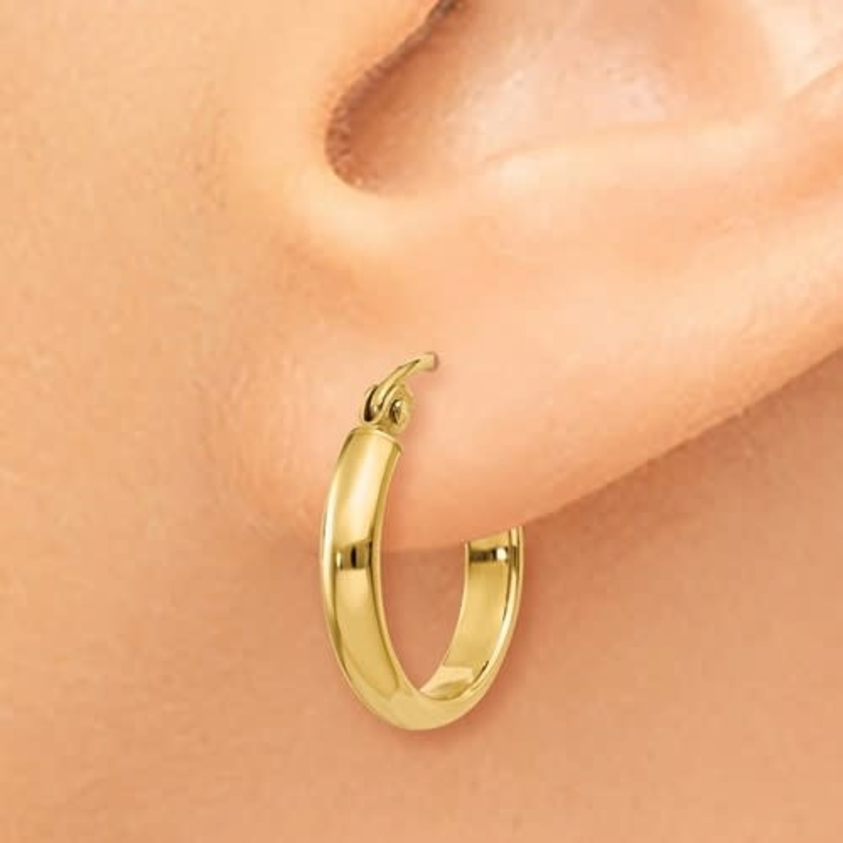 This Is Life 14k Polished 15mm Hoop Earring