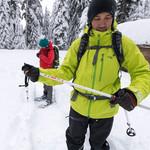 MSR DynaLock  Trail Backcountry Poles