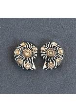 VC Italy Swirl Zebra Shell