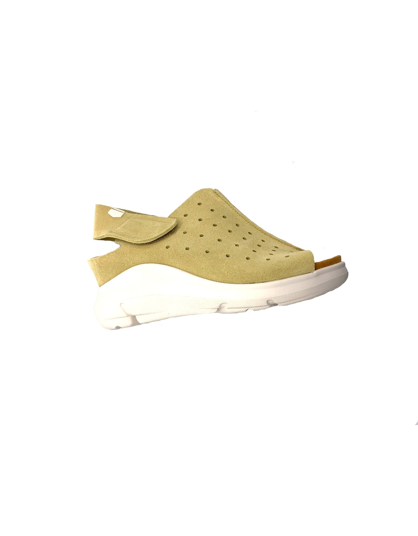 OnFoot 80005
