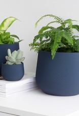 Conifer Pot à Plante Juniper