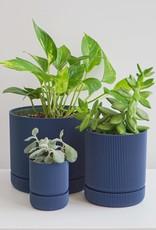 Conifer Pot à Plante Hemlock