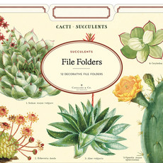 Cavallini Succulents File Folders