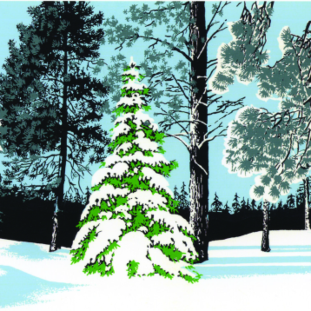 snowy pines holiday card