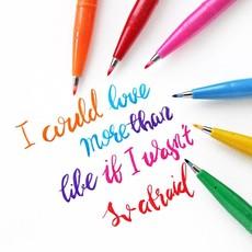 Sign Pen Brush Tip  Set/12