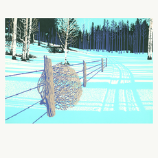 Tumbleweed In Fence Holiday Card