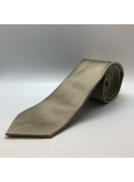 Tie Tan