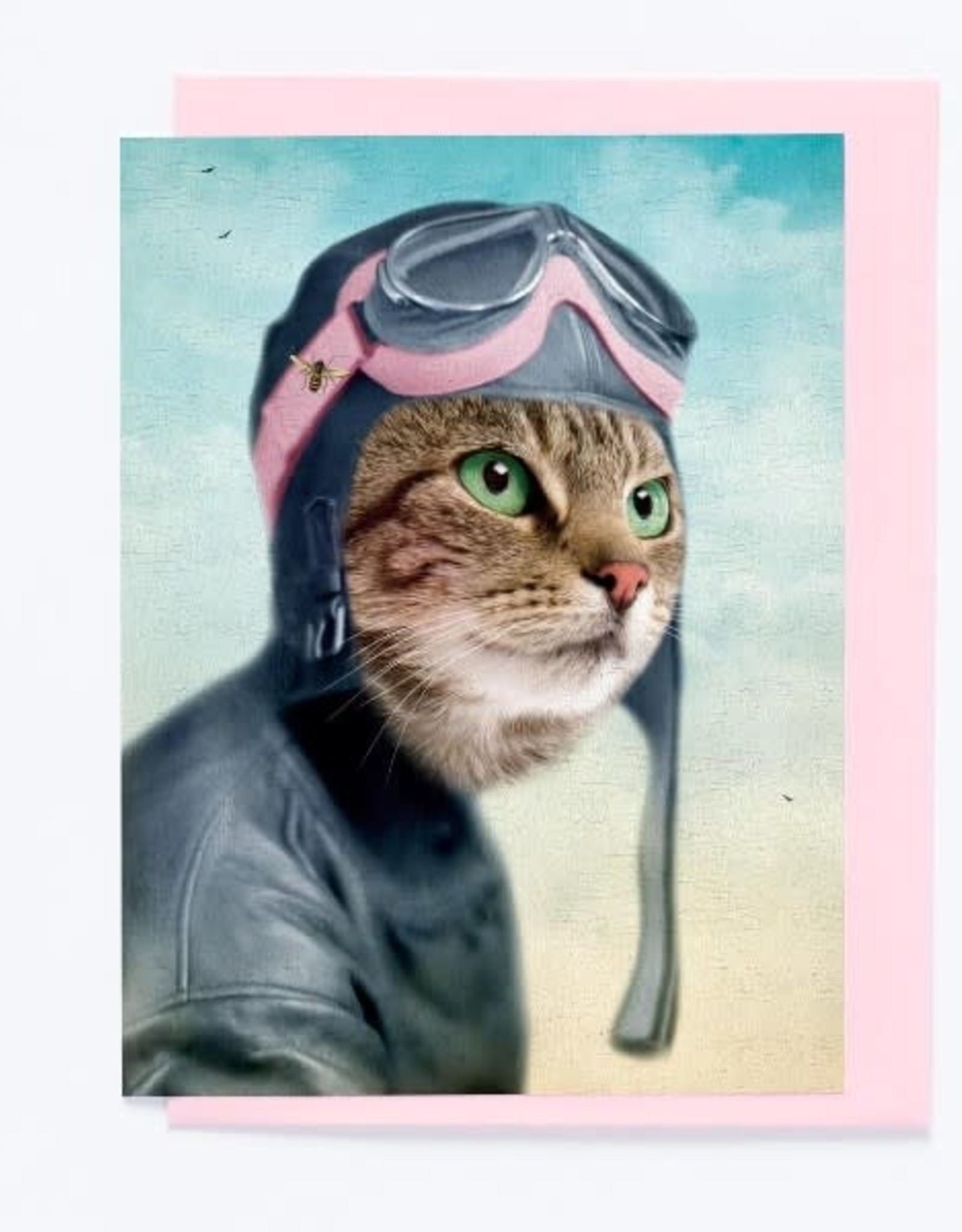 So Meow Carte So Meow L'exploratrice