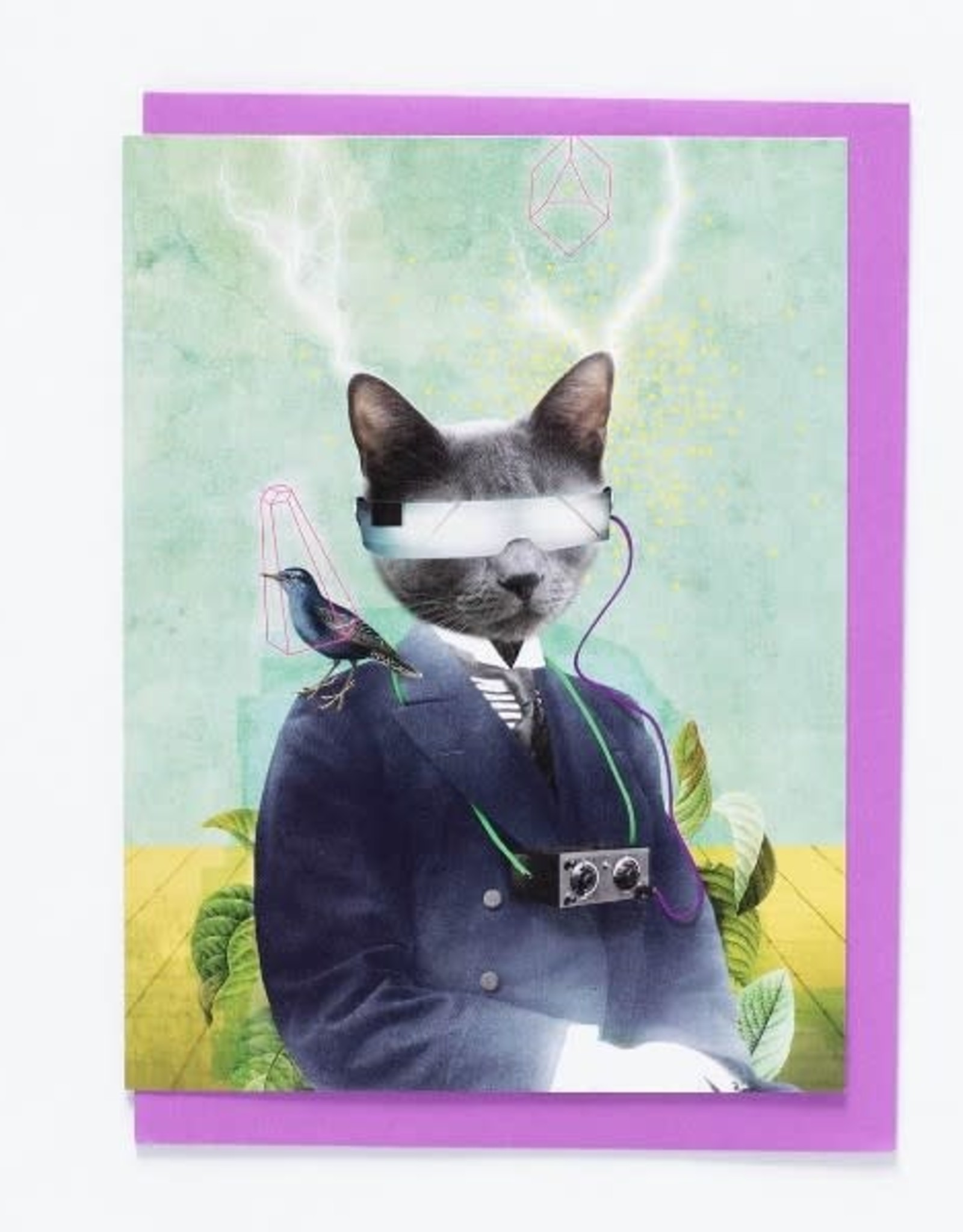 So Meow Carte So Meow Kat 2000
