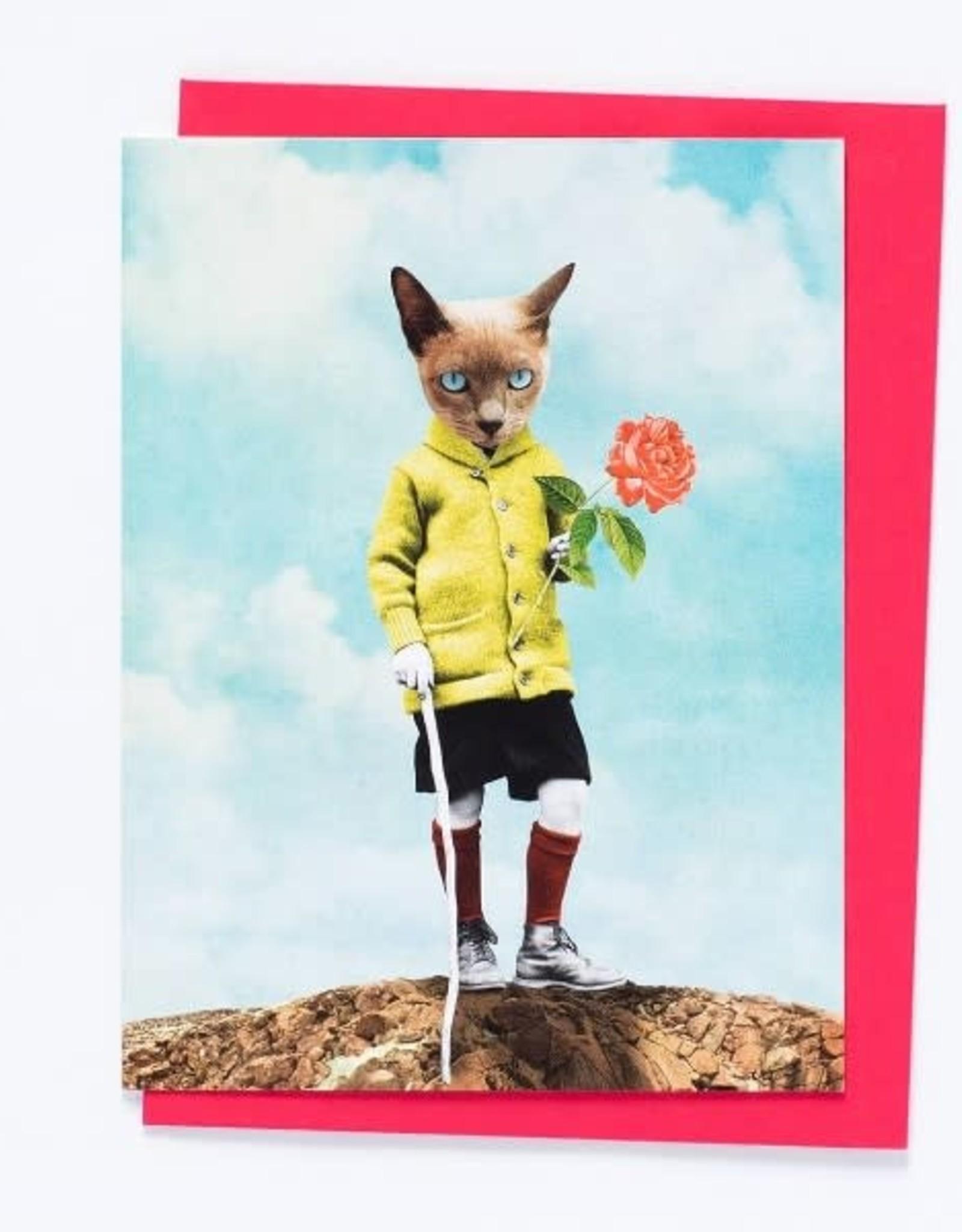 So Meow Carte So Meow Le Petit Prince