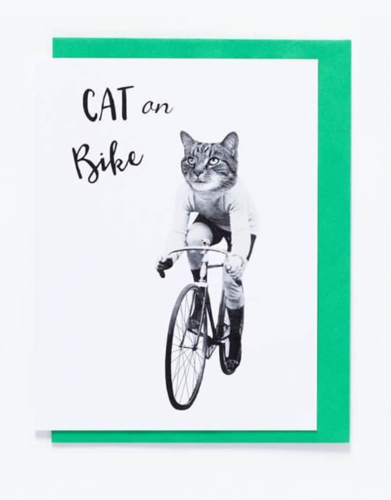 So Meow Carte So Meow Cat On Bike