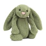 Bashful Bunny Fern