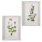 Pink Botanical Framed Art