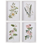 White & Pink Botanical Framed Prints