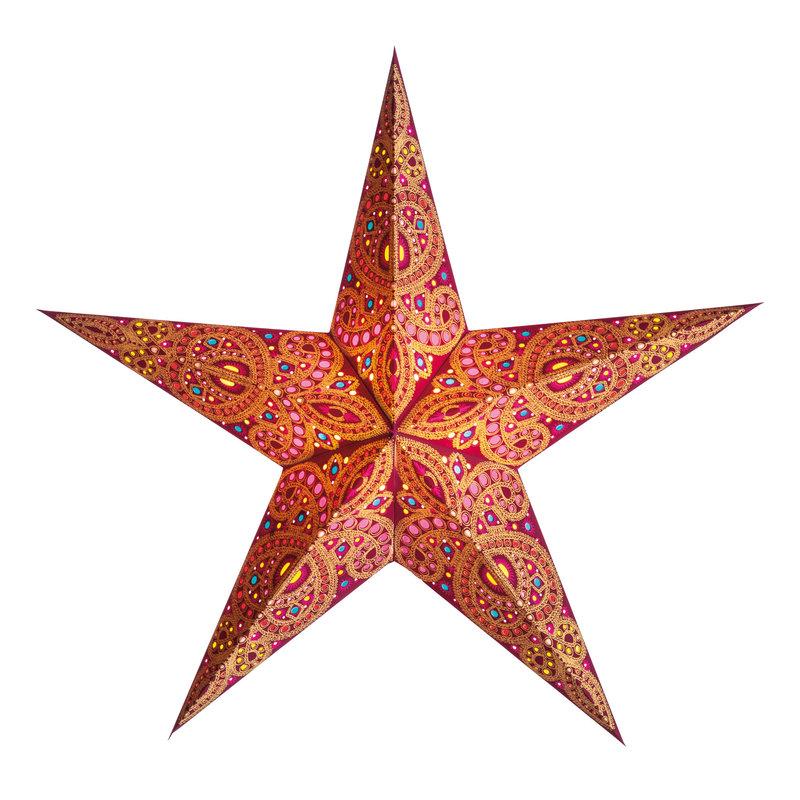 Starlightz- Devi-Apricot (India)
