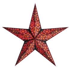 Starlightz- Kalea-Red (India)