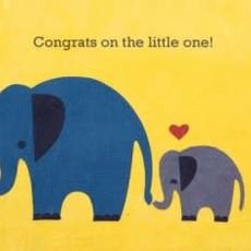 Greeting Card- Elephant Congrats