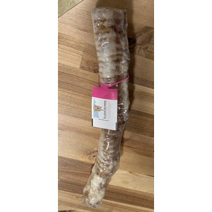 """The Natural Dog Company 12"""" Beef Trachea Chew"""