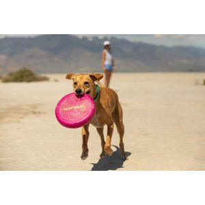 Ruffwear Ruffwear Camp Flyer Toy
