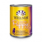 Wellpet Wellness Can Dog puppy 12.5oz