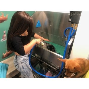 Teton Tails Self-Serve Dog Wash