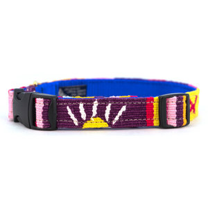 Auburn A Tail We Could Wag Harborside Twilight Collar