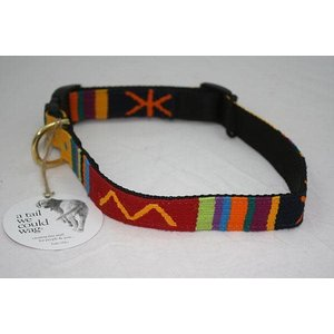 Auburn A Tail We Could Wag Sun Valley Holiday Collar