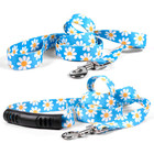 "Yellow Dog Designs Blue Daisy Lead 3/4"" x 5'"