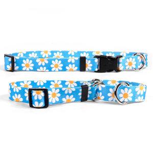 Yellow Dog Designs Yellow Dog Daisy Collars