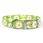 Yellow Dog Designs Yellow Dog Element Green Daisy Collars