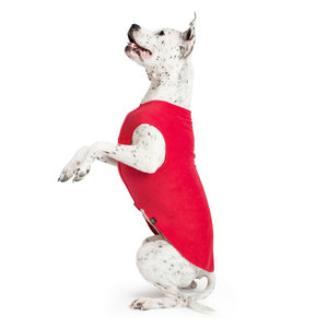 Gold Paw Gold Paw Single Layer Fleece Red