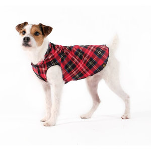 Gold Paw Gold Paw Single Layer Fleece Red Plaid