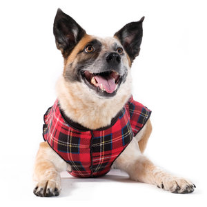 Gold Paw Gold Paw Double Fleece Red Black Plaid