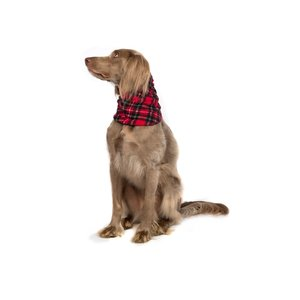 Gold Paw Snood Red Tartan
