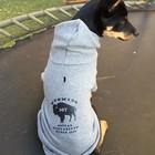 Mirage Pet Products Mirage WYO Social Distancing Dog Hoodie Sweatshirt