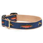 Upcountry Upcountry Navy Trout Collar