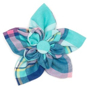 Worthy Dog Worthy Spring Aqua/Plaid Flower