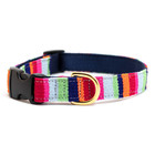 Auburn A Tail We Could Wag At the Beach Maui Collars & Leads