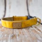 Bella Bean Finnegan Standard Cloth Yellow Waxed Collars