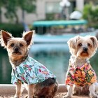 Doggie Design Hawaiian Camp Shirts