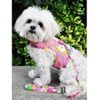 Doggie Design Cool Mesh Harness & Leash Pink Hawaiian Floral